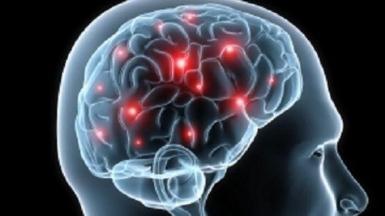 kinerja-otak